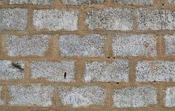 Текстура 4853 - кирпичная стена бетонных плит Стоковое Фото