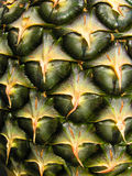 текстура кожи ананаса Стоковая Фотография