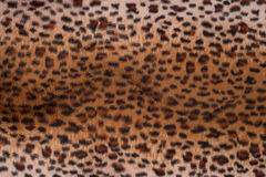 Текстура кожи леопарда для предпосылки Стоковая Фотография