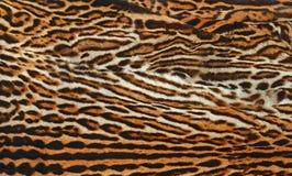 Текстура кожи леопарда Стоковая Фотография