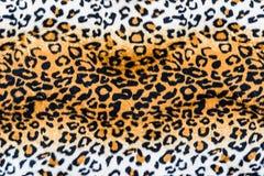 Текстура кожи леопарда Стоковые Фотографии RF