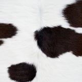 Текстура кожи коровы Стоковое Изображение