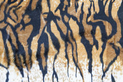 Текстура кожи тигра Стоковые Изображения RF