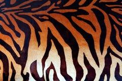 Текстура кожи тигра Стоковая Фотография