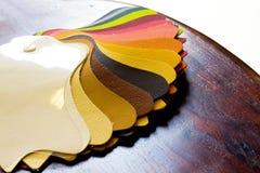 Текстура кожи цвета стоковые фотографии rf