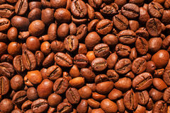 Текстура кофейных зерен Стоковые Фотографии RF