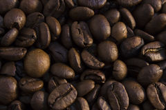 Текстура кофейных зерен Стоковые Изображения RF