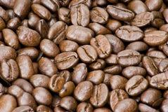 текстура кофе фасолей коричневая Стоковое Фото
