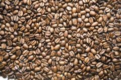 текстура кофе фасолей Стоковая Фотография RF