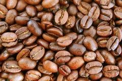 текстура кофе фасолей предпосылки Стоковые Фотографии RF