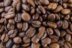 текстура кофе фасолей предпосылки Стоковые Изображения RF