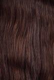 текстура красивейших волос здоровая глянцеватая стоковые фото