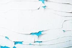 Текстура краски шелушения белой и голубой на старой деревянной поверхности Стоковая Фотография RF