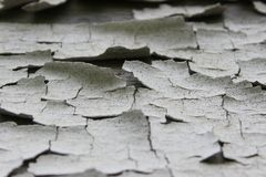Текстура краски шелушения Стоковые Изображения