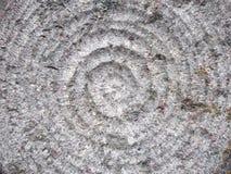 текстура  круглая стоковые фото