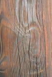 Текстура крупного плана деревянная Стоковое Изображение