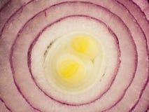 Текстура куска фиолетового лука Стоковая Фотография RF