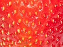 Текстура клубники крупного плана красная, абстрактная Стоковая Фотография