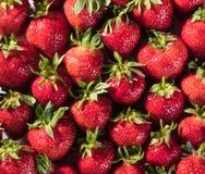 Текстура клубники предпосылки ягоды Стоковые Изображения RF