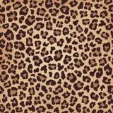 Текстура леопарда бежевая коричневая, имитация меха r стоковые изображения rf