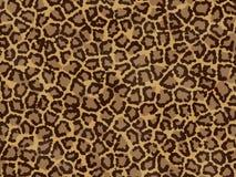 текстура леопарда Стоковые Фото
