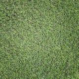 Текстура лист зеленой травы Стоковое Изображение RF