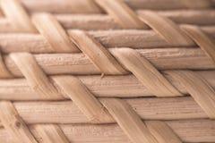 Текстура лозы конца-вверх Абстрактная простая предпосылка Стоковые Изображения RF