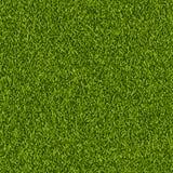 Текстура лужайки зеленой травы вектора безшовная Предпосылка весны или природы лета Иллюстрация поля или луга реалистическая иллюстрация штока