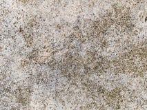 Текстура макроса - камень - mottled утес Стоковое Изображение RF