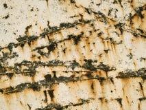 Текстура макроса - металл - поцарапанная и ржавая стоковая фотография rf