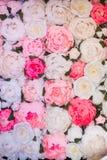 Текстура много завертывает белые, красные и розовые розы в бумагу стоковое изображение
