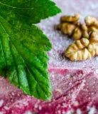 Текстура мороженого Blackcurrant Стоковые Изображения RF