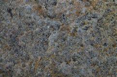 Текстура моря каменная Стоковые Фото