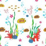 текстура моря млекопитающих жизни предпосылки безшовная подводная Стоковое Изображение