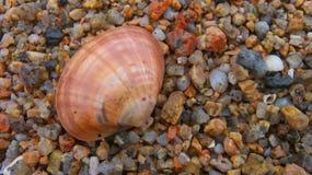 Текстура моря Стоковые Изображения