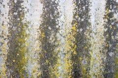 Текстура мха утеса предпосылки Стоковое Изображение RF