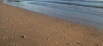 Текстура на пляже Стоковые Фото