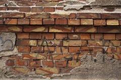 Текстура на раковине, старые здания в Одессе 13 Стоковое фото RF