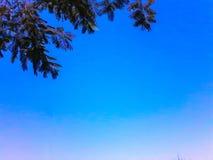 текстура неба небес вечера Стоковое Изображение