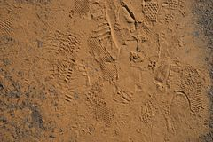Текстура ноги ботинок печатает на золотой предпосылке песка Стоковые Фото