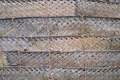 Текстура 4720 - ограждать лист ладони Стоковое фото RF