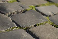 Текстура дороги с каменным masonry Стоковые Изображения RF