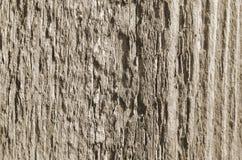 Текстура отрезанных деревянных цветов нейтрали доски Стоковая Фотография