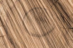 Текстура отрезка дерева Стоковая Фотография RF