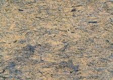 Текстура панели OSB стоковая фотография rf
