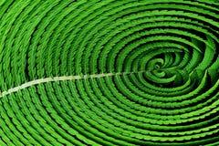 Текстура папоротника, абстрактное изображение Стоковая Фотография