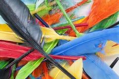 текстура пер Красивое покрашенное живое фото пера птицы как предпосылка Цветастая картина пера Стоковые Изображения