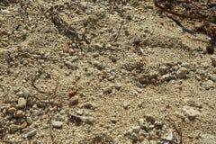 Текстура песка и округленных камешков Стоковое фото RF