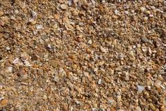 Текстура песка и seashells против предпосылки голубые облака field wispy неба природы зеленого цвета травы белое Стоковая Фотография