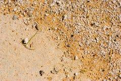 текстура песка предпосылок идеально Песок Брайна Предпосылка от песка Предпосылка песка Стоковая Фотография